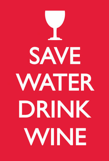 Save Water Drink Wine Funny Fridge Magnet