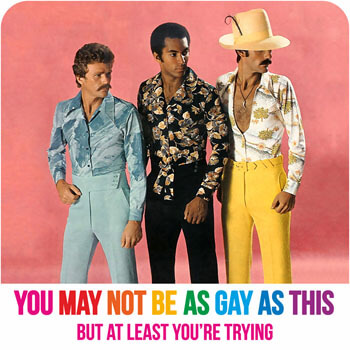 You May Not Be As Gay As This Funny Coaster