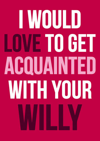 Love To Get Acquainted With Your Willy Funny Valentines Card