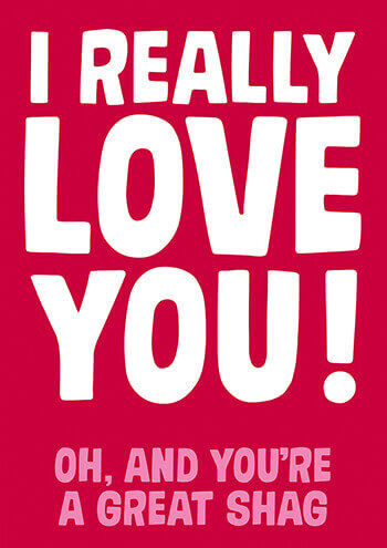 I Really Love You Funny Valentines Card