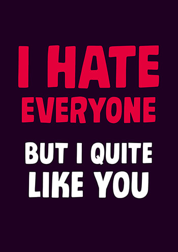 I Hate Everyone Funny Valentines Card