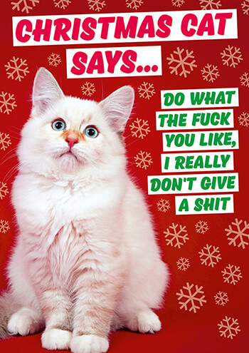 Christmas Cat Says Rude Christmas Card