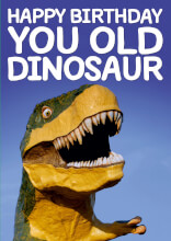 You old dinosaur