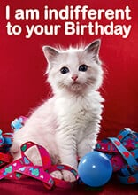 I am Indifferent To Your Birthday Funny Birthday Card