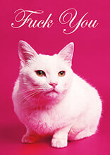 Fuck You Cat Rude Birthday Card