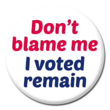 Don't Blame Me I Voted Remain Funny Badge