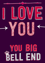 I Love You You Big Bell End Funny Valentines Card