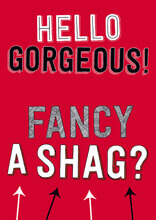 Hello Gorgeous - Fancy A Shag? Funny Valentines Card