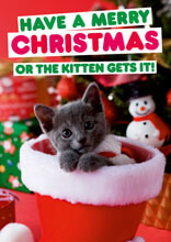 Have A Merry Christmas Or The Kitten Gets It Funny Christmas Card