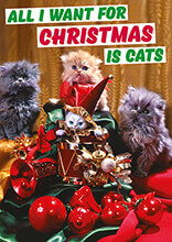 All I Want For Christmas Is Cats Funny Christmas Card