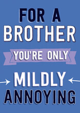 For A Brother You're Only Mildly Annoying Funny Birthday Card