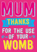 Mum Thanks for the use of your womb